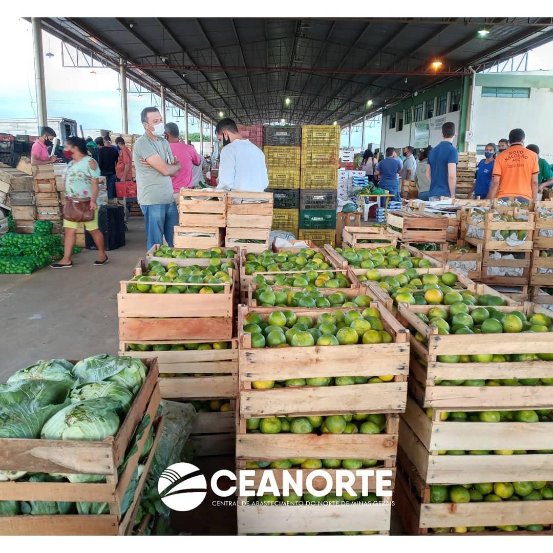 Imagem de destaque VARIAÇÃO DE PREÇOS NA CEANORTE - Alta amarga do jiló foi exceção nesta quarta