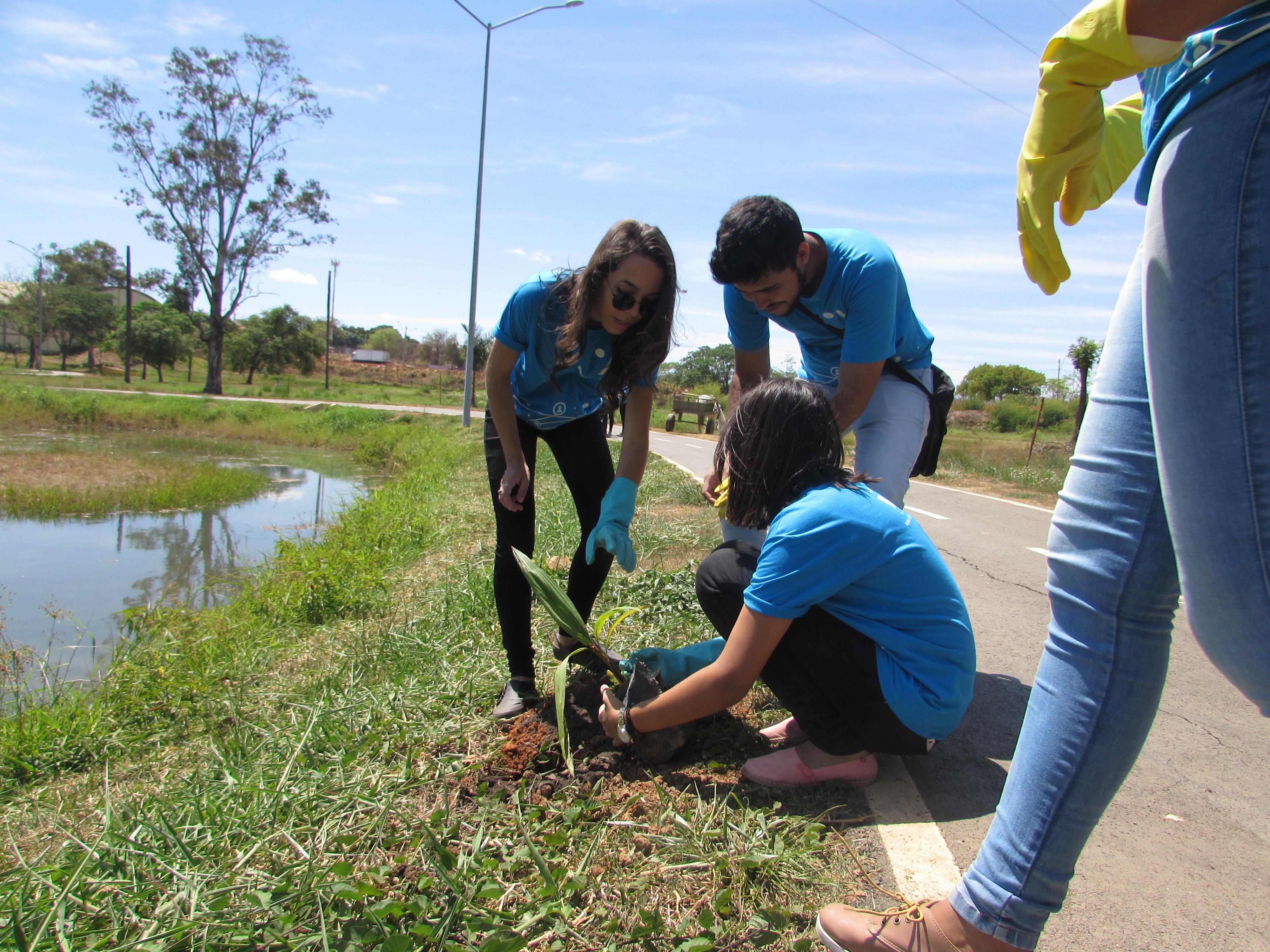 Imagem de destaque Prefeitura e ONG recolhem lixo e plantam mudas no Parque Municipal