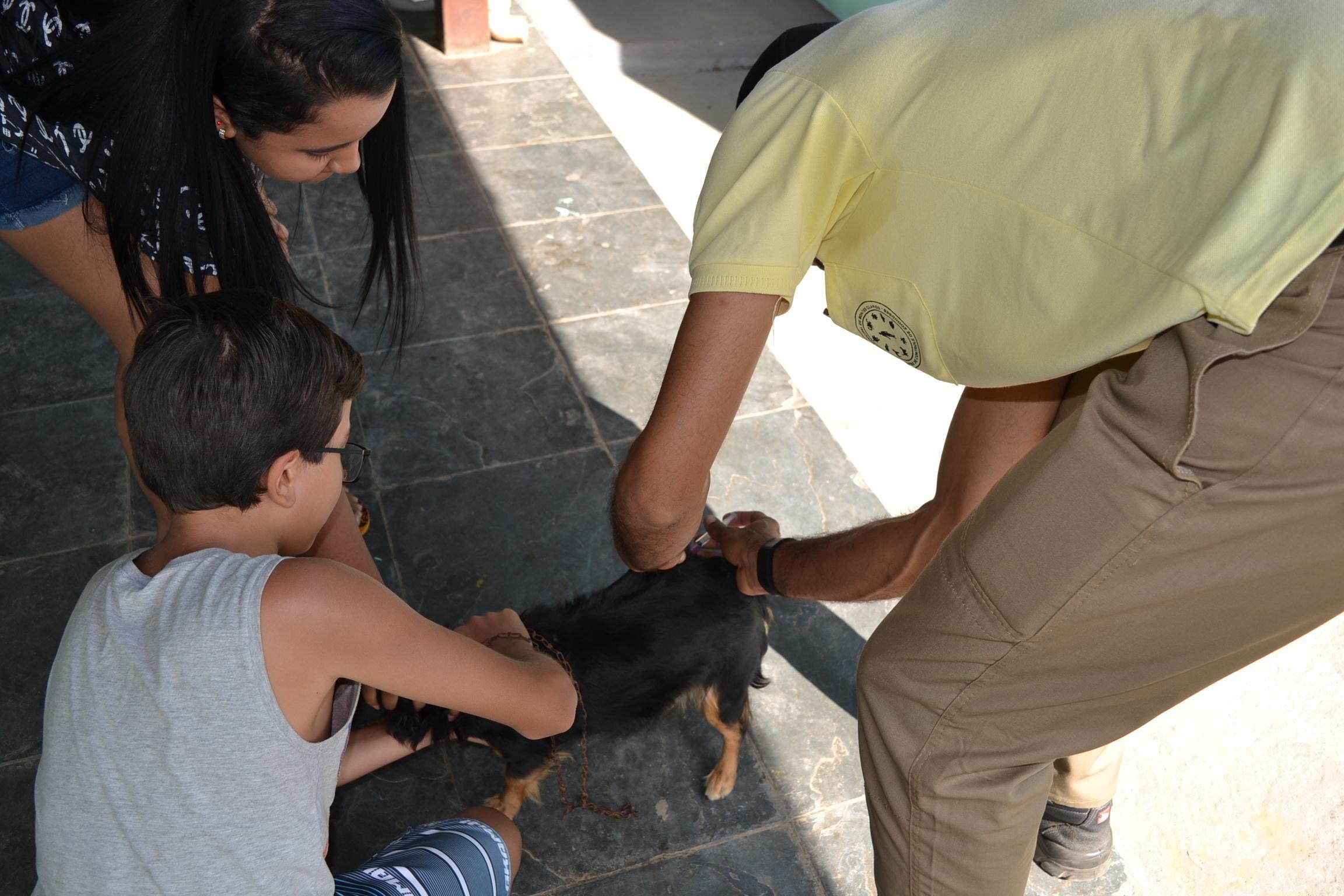 Imagem de destaque Campanha de Vacinação contra a Raiva chega à zona rural neste domingo
