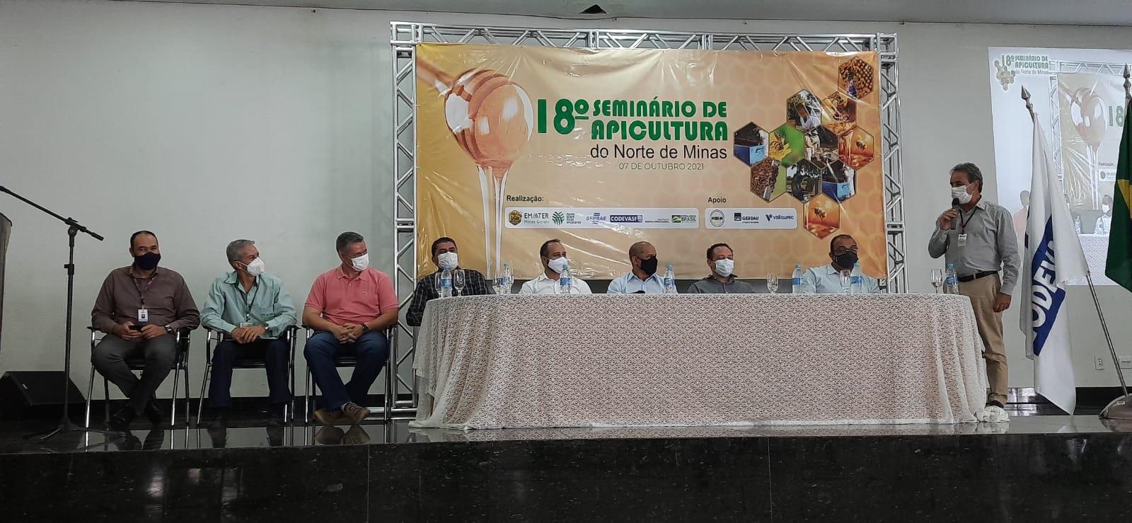 Imagem de destaque SEMINÁRIO DE APICULTURA DO NORTE DE MINAS - Montes Claros debate propostas para o setor