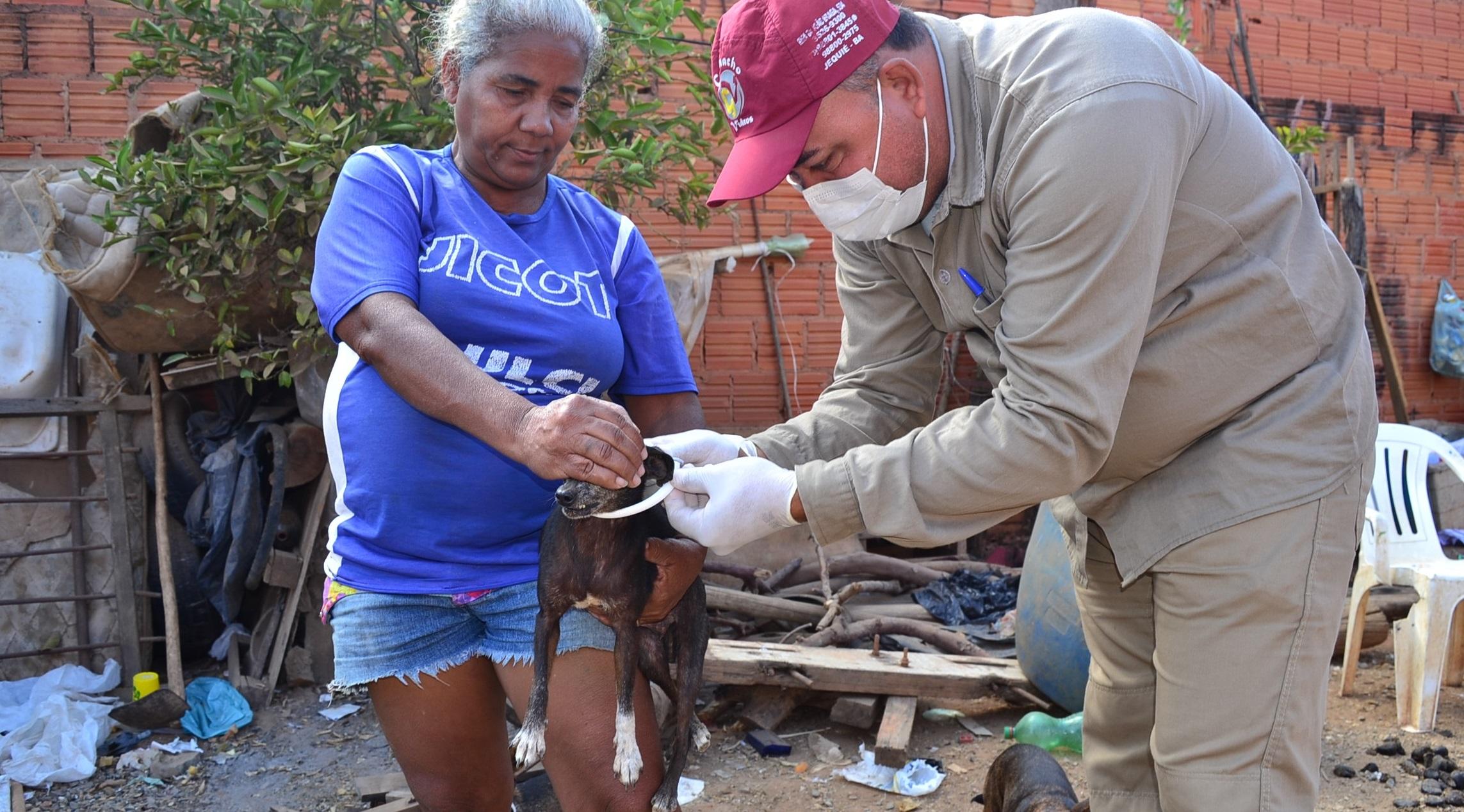 Imagem de destaque Prefeitura distribui coleiras contra a leishmaniose