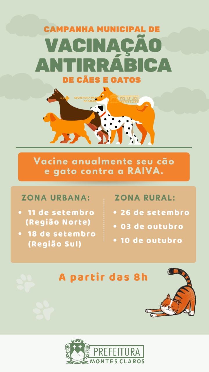 Imagem de destaque RAIVA - Campanha de vacinação de cães e gatos começa neste sábado