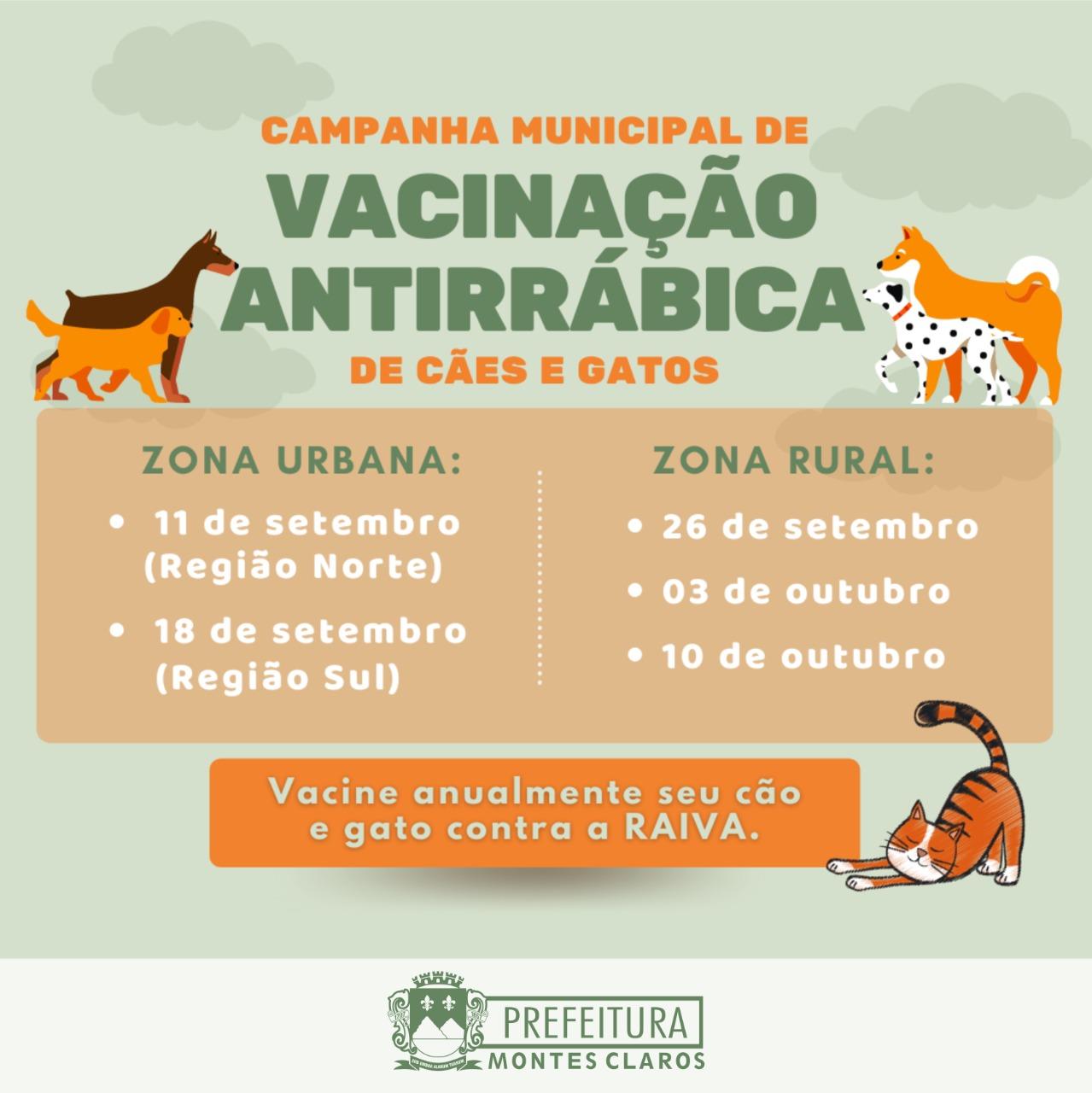 Imagem de destaque RAIVA - Campanha de vacinação de cães e gatos chega domingo na zona rural