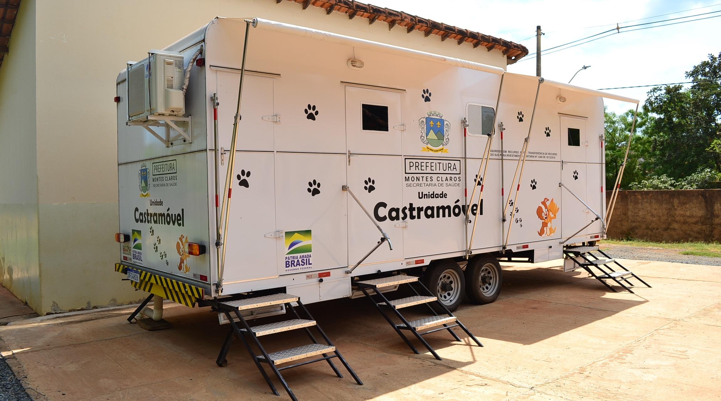Imagem de destaque Prefeitura realizou mais de 200 castrações de cães e gatos em agosto