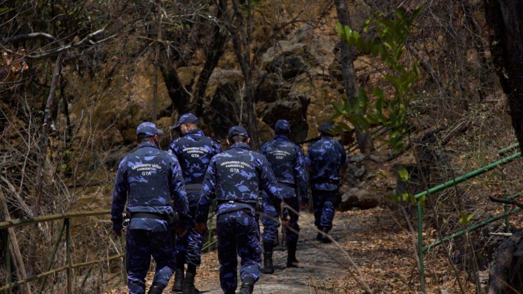 Imagem de destaque Guarda Municipal se une à força tarefa contra incêndios florestais