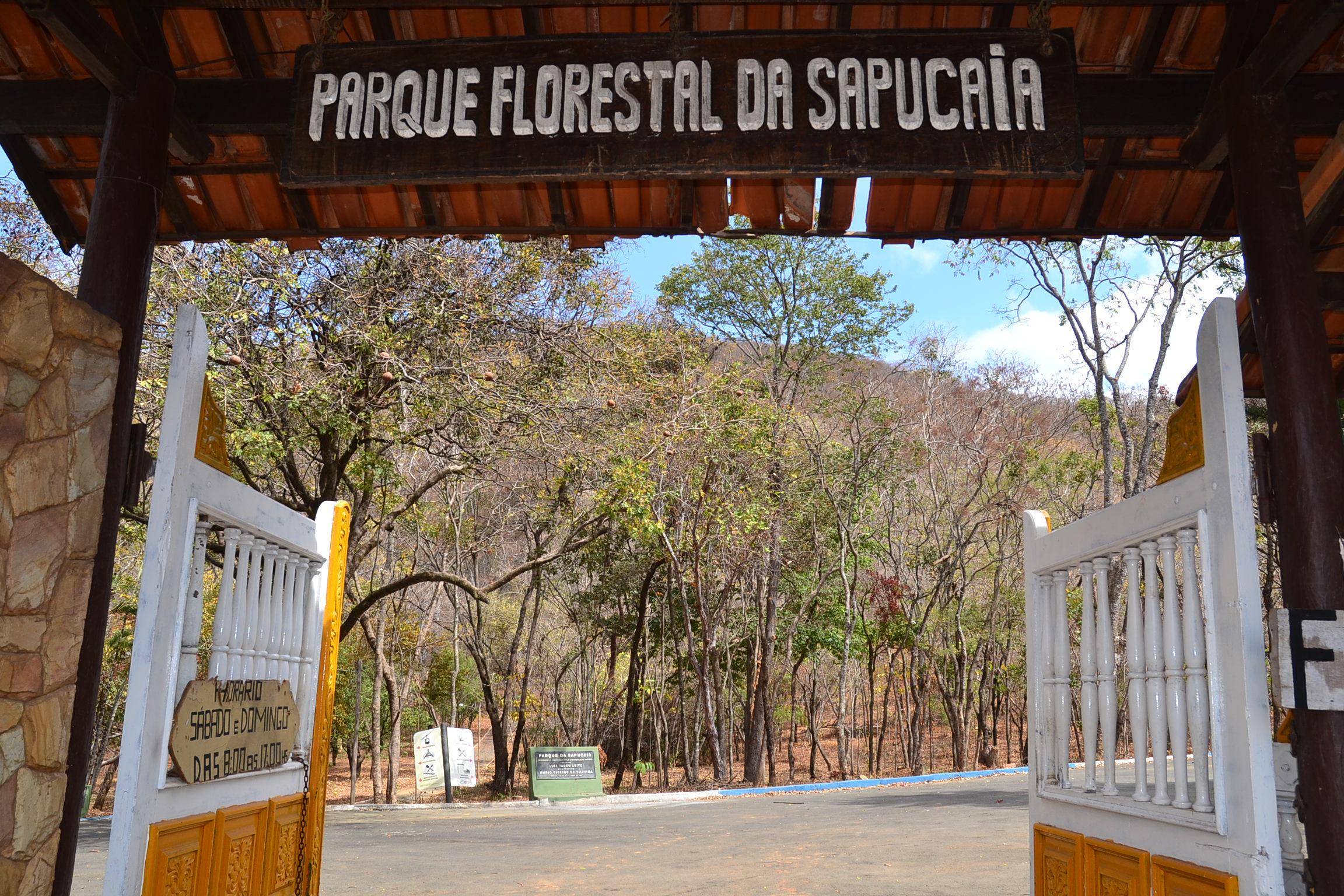 Imagem de destaque Parque da Sapucaia está sendo revitalizado para ser reaberto ao público